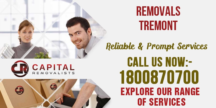 Removals Tremont